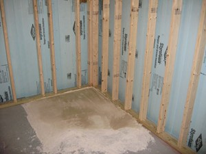 Healthy Safe Moisture Amp Mold Free Basement Living Space